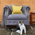 Alexander and James Sofas Jude Chair Collection at Kings Interiors - Quality Handmade Home Upholstery Retailer based in Nottingham. Best Prices and Free Delivery in the UK