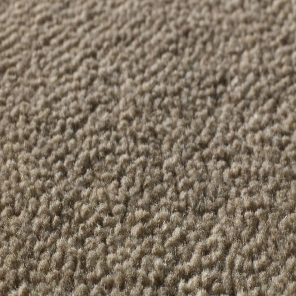 Jacaranda carpets palana taupe at kings carpets in for Taupe color carpet