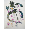 Samuel Holden - Orchid Print (Framed) - Limited Edition Artworks at Kings Carpets and Interiors