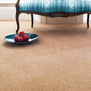 Adam Carpets Fine Upland Twist at Kings of Nottingham for the best fitted prices on all Adam Carpets.