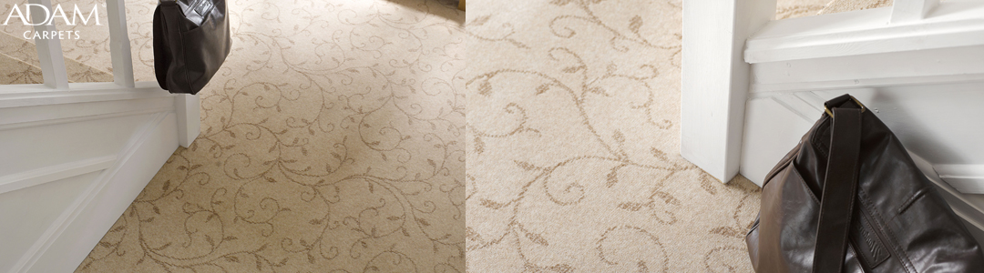 Adam Carpets Florentine at Kings of Nottingham for the best fitted prices on all Adam Carpets