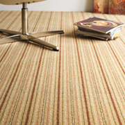 Adam Carpets Kasbah Stripe at Kings of Nottingham for the best fitted prices on all Adam Carpets.