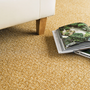Adam Carpets Sylvan Shadows at Kings of Nottingham for the best fitted prices on all Adam Carpets.