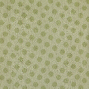 Brintons Padstow Pistachio Spot - 4/50165 from Kings Interiors - the Ideal Place for Luxury Furniture and Home Flooring Best Price in the UK