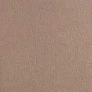 Brintons Carpets True Velvet Stucco (EV382)
