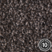 Cormar Carpets Primo Choice Bulrush - Easy Clean Twist - Free Fitting Within 25 Miles of Nottingham