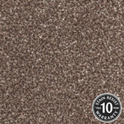 Cormar Carpets Primo Choice Truffle - Easy Clean Twist - Free Fitting Within 25 Miles of Nottingham