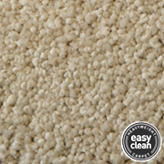 Cormar Carpets Sensations Supreme Ash Blonde - Easy Clean Deep Pile Carpet - Free Fitting Within 25 Miles of Nottingham