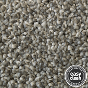 Easy Clean luxury Pile Carpets