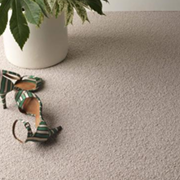 Jacaranda Carpets Milford Kings of Nottingham for the best fitted prices on all Jacaranda Carpets