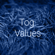 What are Carpet Tog Values? A buyer's guide to carpet insulation values and which is right for you.