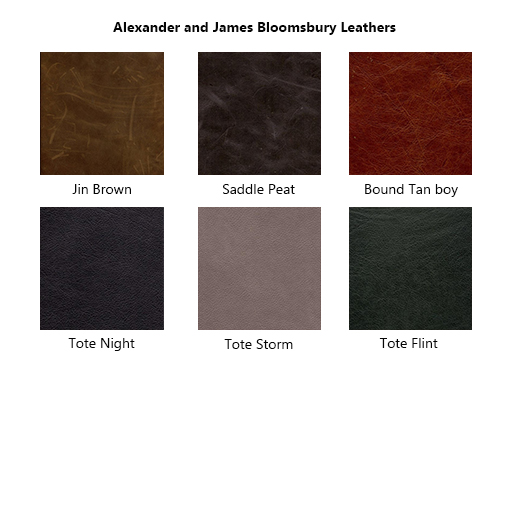 Alexander and James Bloomsbury Leathers 2