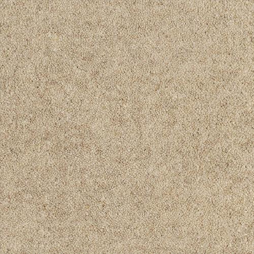 Alternative Flooring Barefoot Wool Bikram Karma Carpet 5901