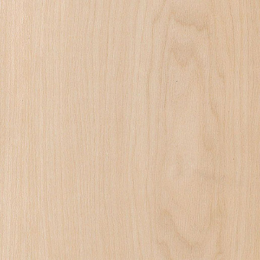 Amtico Spacia Pale Maple SS5W2501