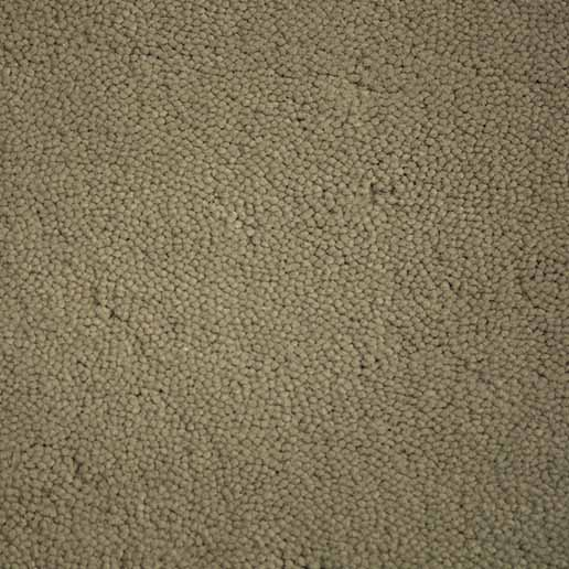 Stoddard Carpets Velluto Hint of Sage