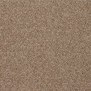 Stain Free Twist Almond full house of carpet for £1250.